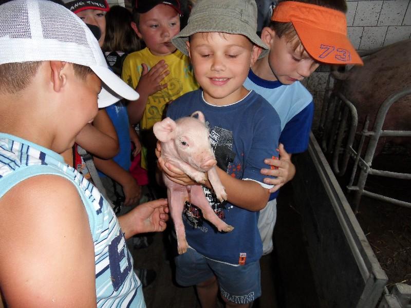Prohlížíte si obrázky k článku: Návštěva v Chorušicích